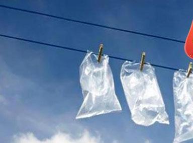 我国科学家发现能降解塑料菌群